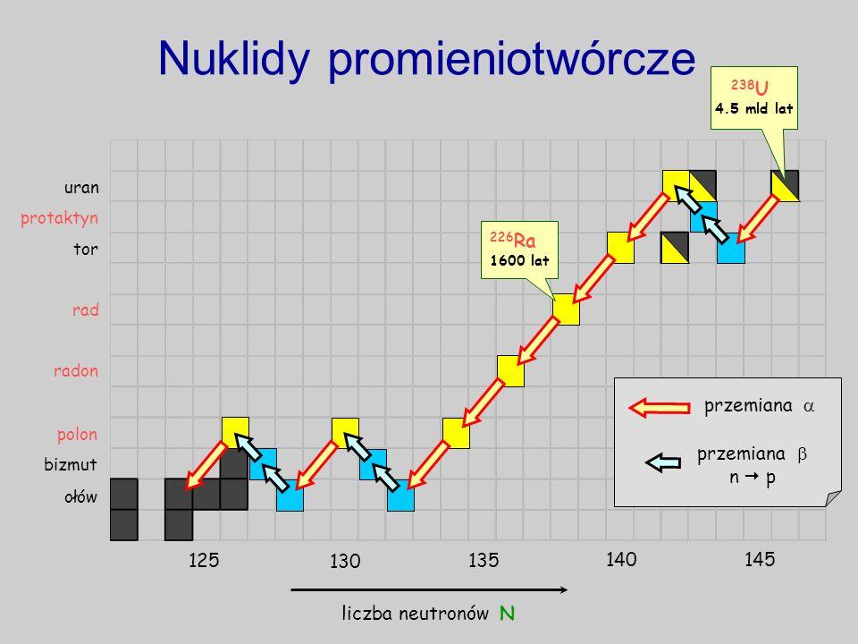 przemiana 238 U 4.5 mld lat ołów bizmut uran tor Nuklidy promieniotwórcze liczba neutronów N przemiana n p protaktyn 125 130 135 140145 rad 226 Ra 160