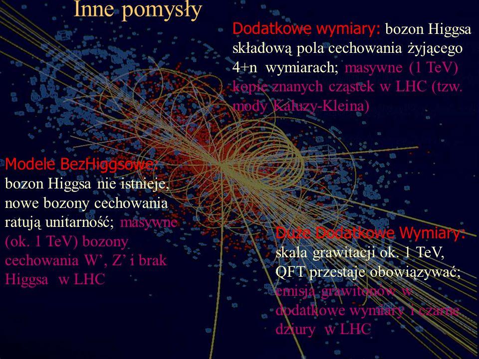 Inne pomysły Dodatkowe wymiary: bozon Higgsa składową pola cechowania żyjącego 4+n wymiarach; masywne (1 TeV) kopie znanych cząstek w LHC (tzw. mody K