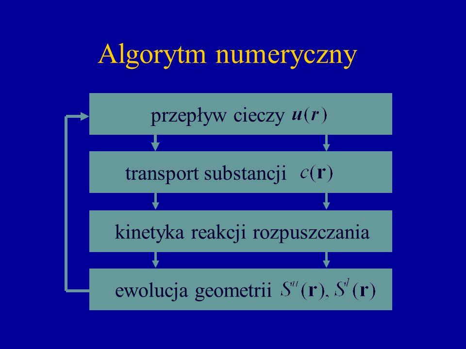 Rozpuszczanie nie jest proste… Algorytm numeryczny przepływ cieczy transport substancji ewolucja geometrii kinetyka reakcji rozpuszczania