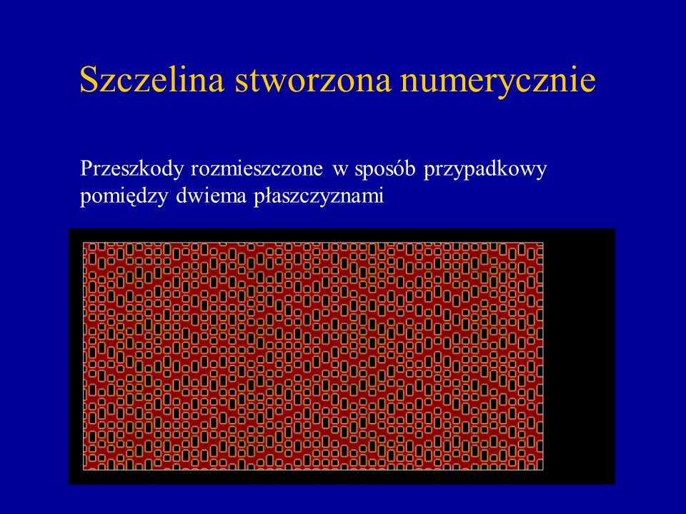 Szczelina stworzona numerycznie Przeszkody rozmieszczone w sposób przypadkowy pomiędzy dwiema płaszczyznami