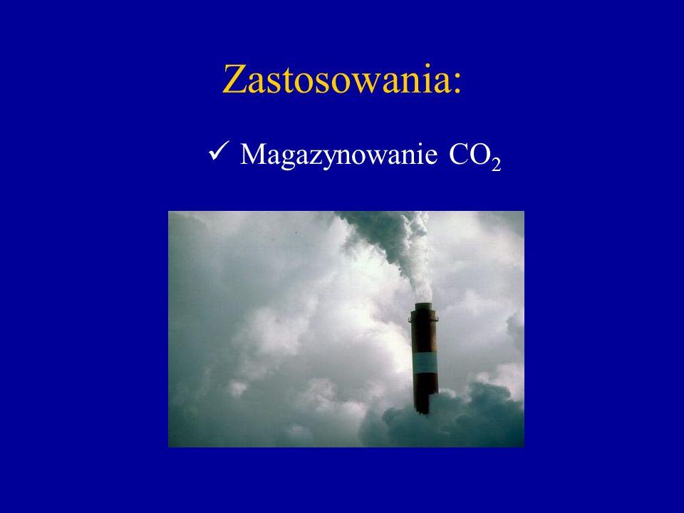 Zastosowania: Magazynowanie CO 2