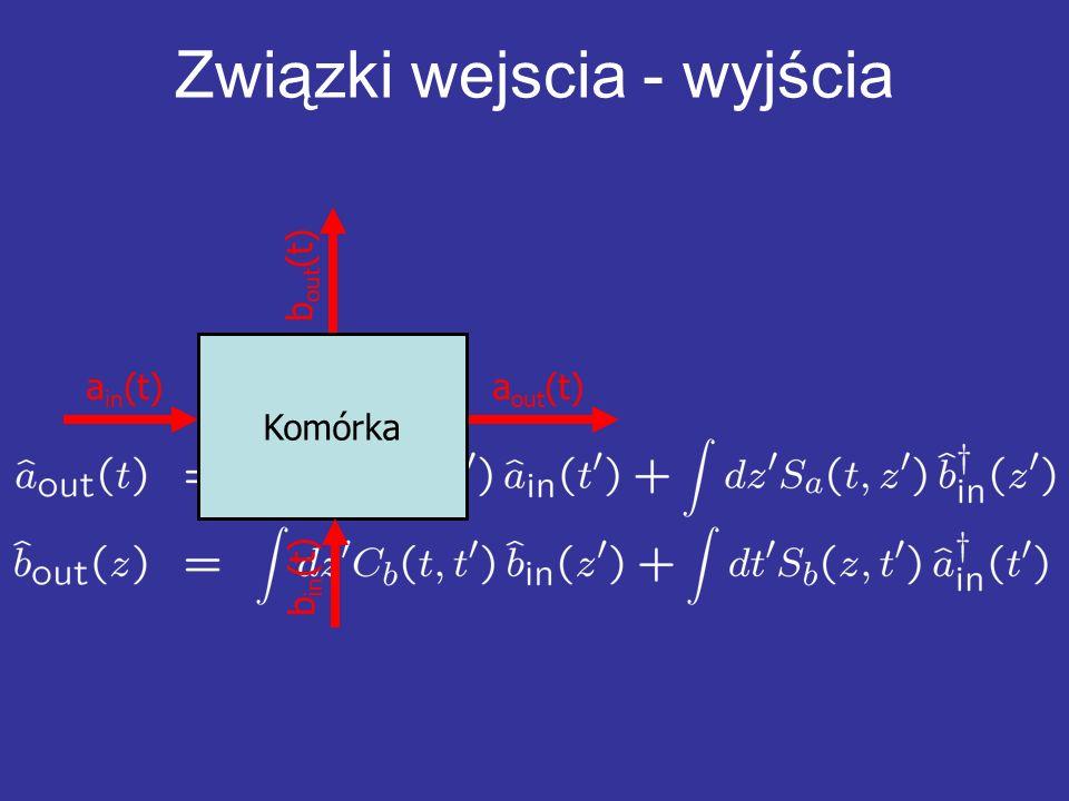 Związki wejscia - wyjścia a out (t)a in (t) Komórka b in (t) b out (t)