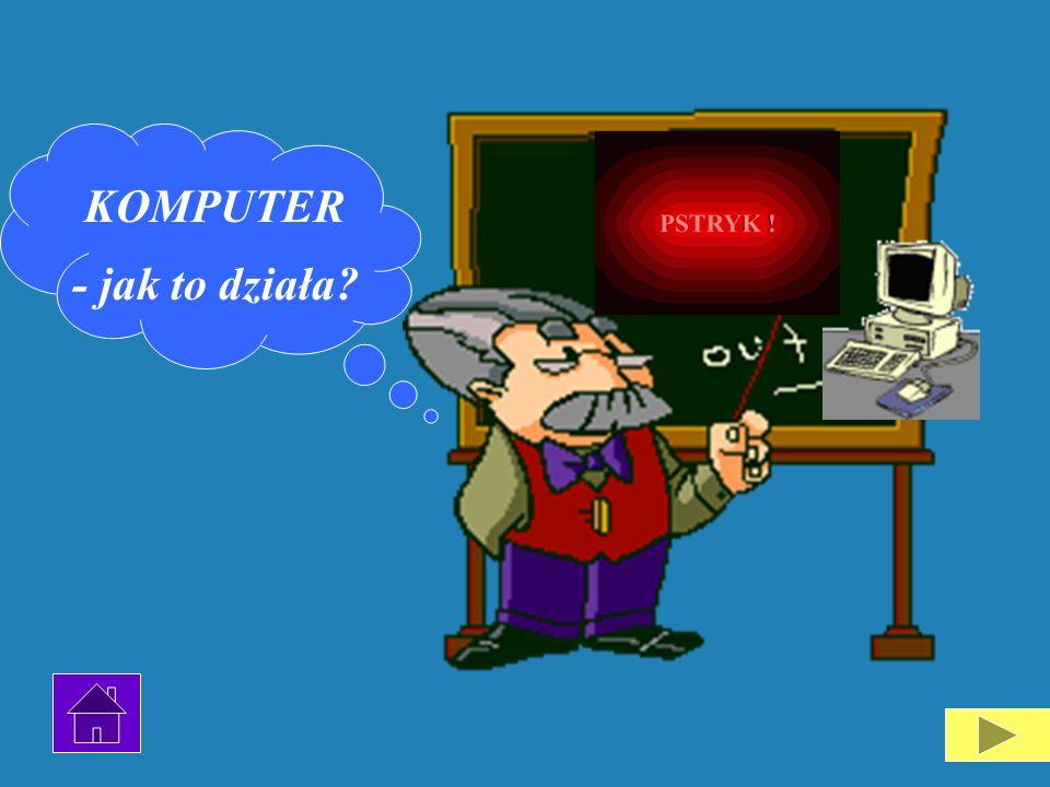 Wnętrze każdego komputera wygląda podobnie, tzn. składa się z typowej grupy elementów: płyty głównej, procesora, napędów dyskietek, zasilacza i modułó