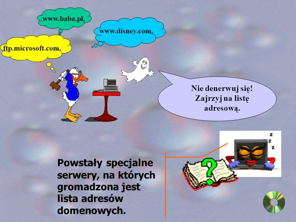 Zapamiętanie kilku lub kilkunastu takich adresów 198.105.232.1 nie było proste, dlatego zastąpiono je symbolami : ftp.microsoft.com.
