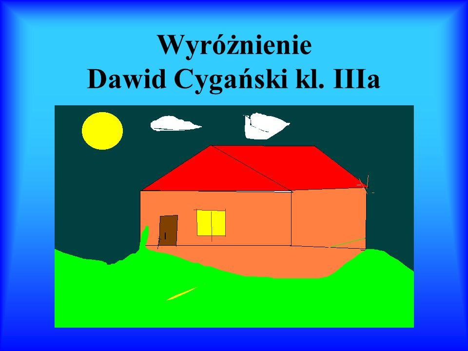 Wyróżnienie Dawid Cygański kl. IIIa