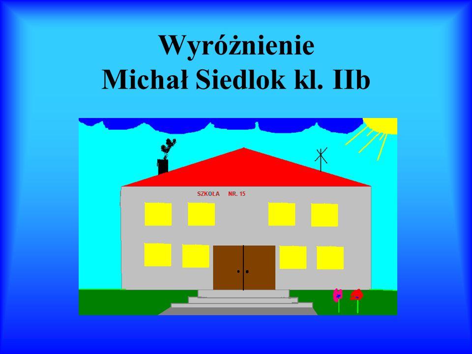 Wyróżnienie Michał Siedlok kl. IIb