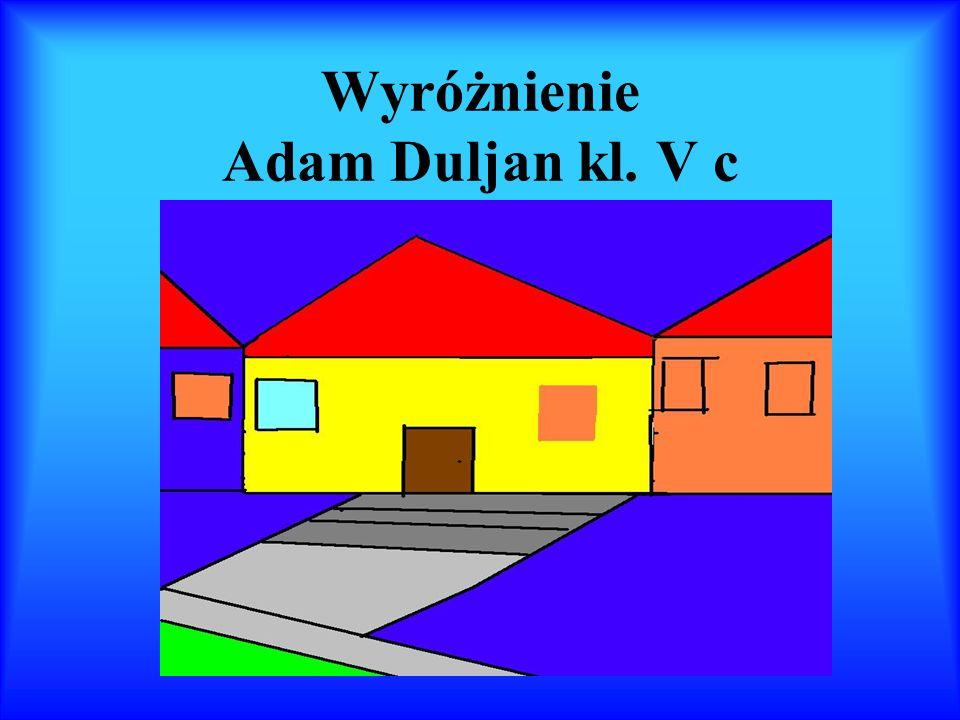 Wyróżnienie Adam Duljan kl. V c