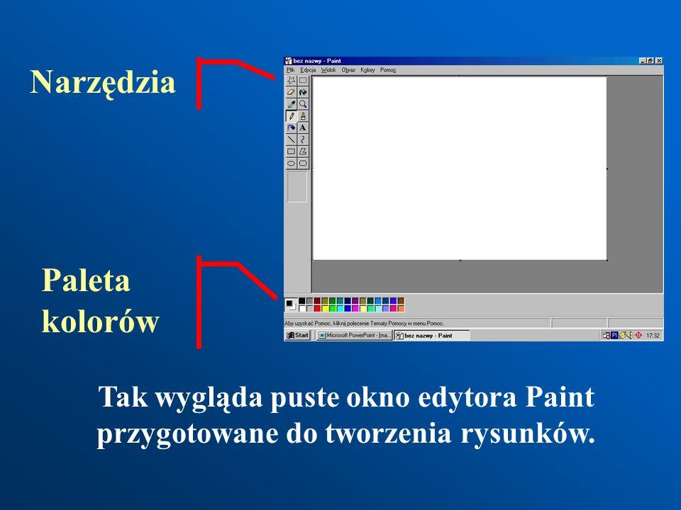 Za pomocą prostych narzędzi do rysowania znajdujących się w programie Paint (Paintbrush) można wykonywać piękne prace plastyczne. Rysunek Pauliny