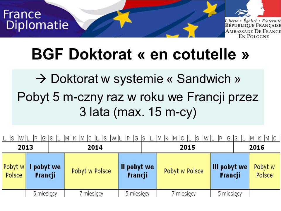 BGF Doktorat « en cotutelle » Doktorat w systemie « Sandwich » Pobyt 5 m-czny raz w roku we Francji przez 3 lata (max. 15 m-cy)