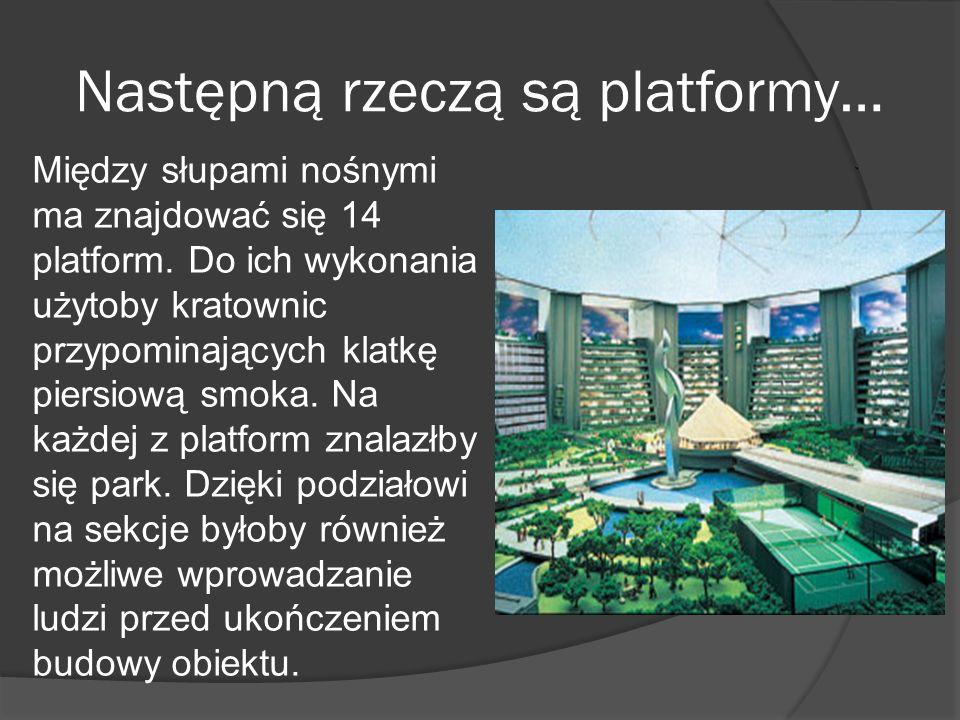 Następną rzeczą są platformy… Między słupami nośnymi ma znajdować się 14 platform. Do ich wykonania użytoby kratownic przypominających klatkę piersiow