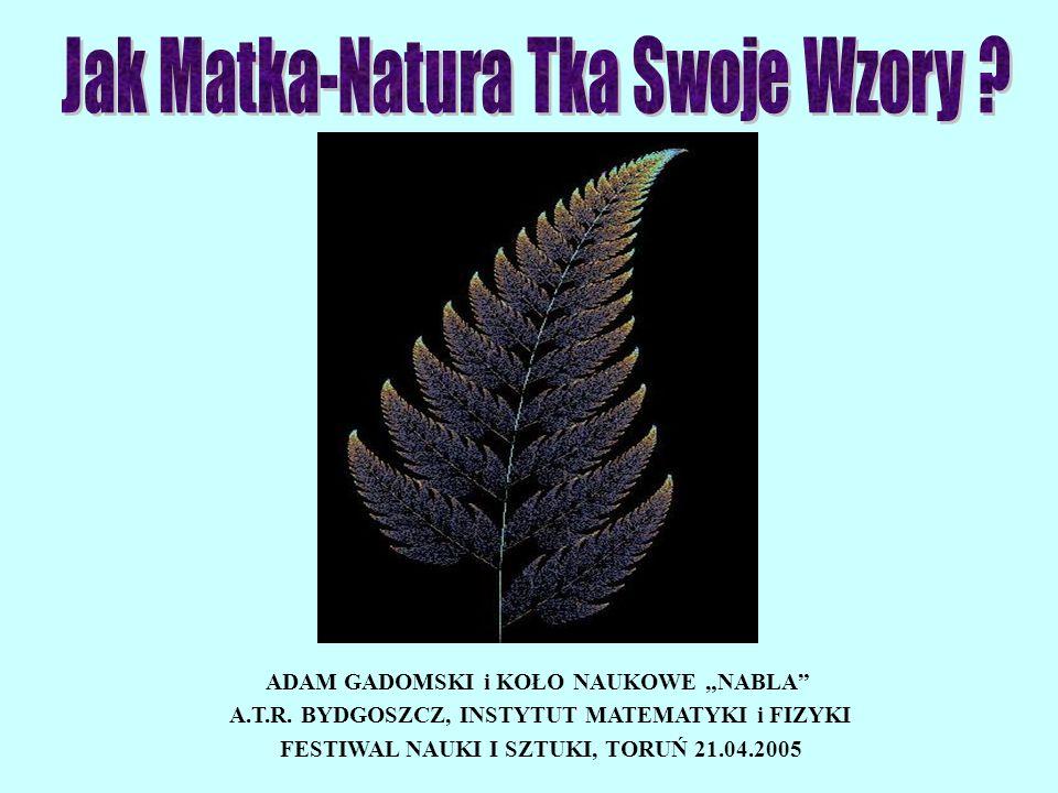 ADAM GADOMSKI i KOŁO NAUKOWE NABLA A.T.R. BYDGOSZCZ, INSTYTUT MATEMATYKI i FIZYKI FESTIWAL NAUKI I SZTUKI, TORUŃ 21.04.2005
