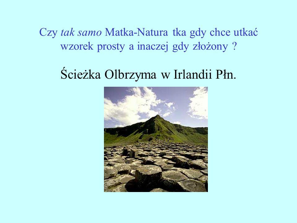 Czy tak samo Matka-Natura tka gdy chce utkać wzorek prosty a inaczej gdy złożony ? Ścieżka Olbrzyma w Irlandii Płn.