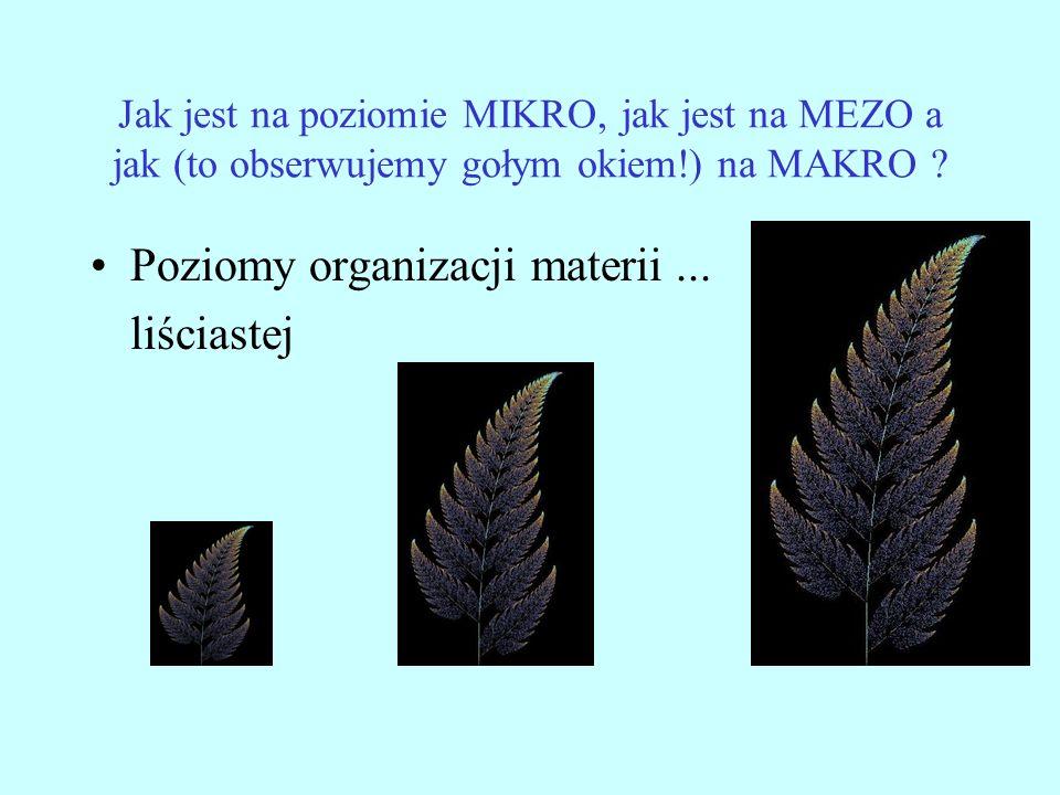 Jak jest na poziomie MIKRO, jak jest na MEZO a jak (to obserwujemy gołym okiem!) na MAKRO ? Poziomy organizacji materii... liściastej