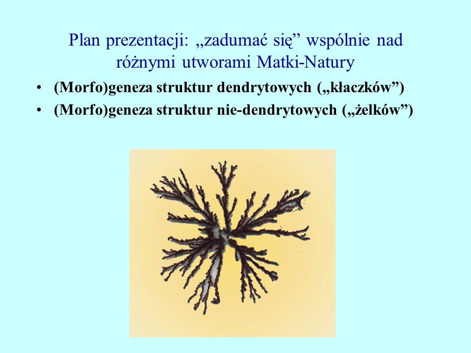 Plan prezentacji: zadumać się wspólnie nad różnymi utworami Matki-Natury (Morfo)geneza struktur dendrytowych (kłaczków) (Morfo)geneza struktur nie-den