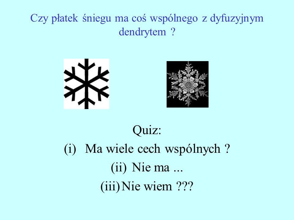 Czy płatek śniegu ma coś wspólnego z dyfuzyjnym dendrytem ? Quiz: (i)Ma wiele cech wspólnych ? (ii)Nie ma... (iii)Nie wiem ???
