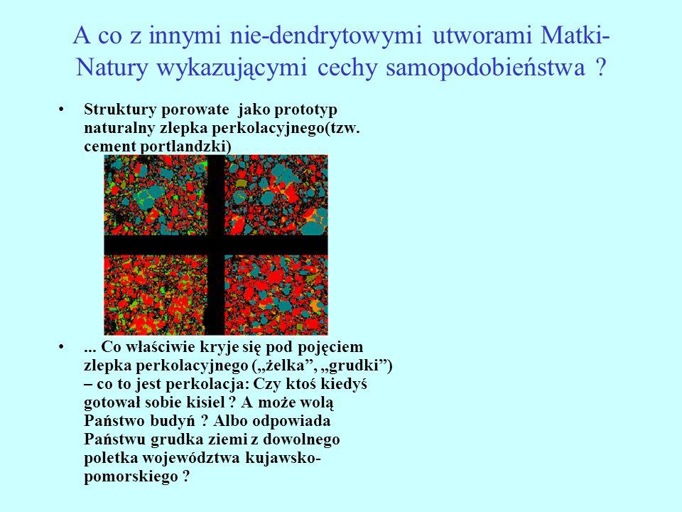 A co z innymi nie-dendrytowymi utworami Matki- Natury wykazującymi cechy samopodobieństwa ? Struktury porowate jako prototyp naturalny zlepka perkolac