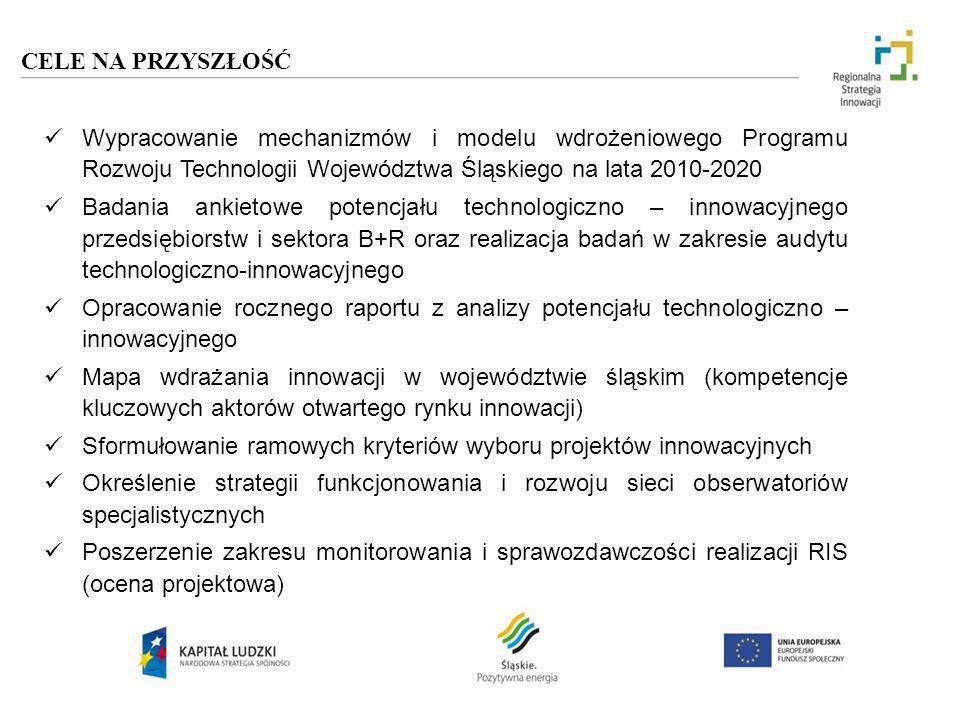CELE NA PRZYSZŁOŚĆ Wypracowanie mechanizmów i modelu wdrożeniowego Programu Rozwoju Technologii Województwa Śląskiego na lata 2010-2020 Badania ankiet