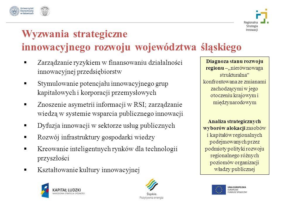 Wyzwania strategiczne innowacyjnego rozwoju województwa śląskiego Diagnoza stanu rozwoju regionu –nierównowaga strukturalna konfrontowana ze zmianami zachodzącymi w jego otoczeniu krajowym i międzynarodowym Analiza strategicznych wyborów alokacji zasobów i kapitałów regionalnych podejmowanych przez podmioty polityki rozwoju regionalnego różnych poziomów organizacji władzy publicznej Zarządzanie ryzykiem w finansowaniu działalności innowacyjnej przedsiębiorstw Stymulowanie potencjału innowacyjnego grup kapitałowych i korporacji przemysłowych Znoszenie asymetrii informacji w RSI; zarządzanie wiedzą w systemie wsparcia publicznego innowacji Dyfuzja innowacji w sektorze usług publicznych Rozwój infrastruktury gospodarki wiedzy Kreowanie inteligentnych rynków dla technologii przyszłości Kształtowanie kultury innowacyjnej