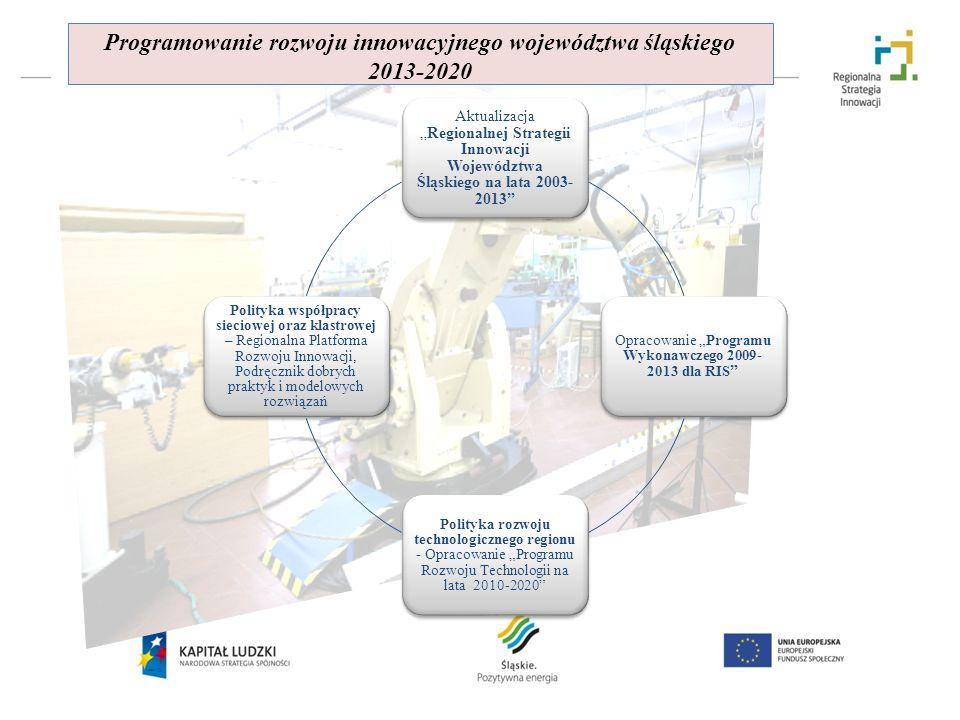 AktualizacjaRegionalnej Strategii Innowacji Województwa Śląskiego na lata 2003- 2013 Opracowanie Programu Wykonawczego 2009- 2013 dla RIS Polityka roz