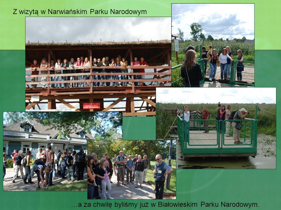 Z wizytą w Narwiańskim Parku Narodowym …a za chwilę byliśmy już w Białowieskim Parku Narodowym.