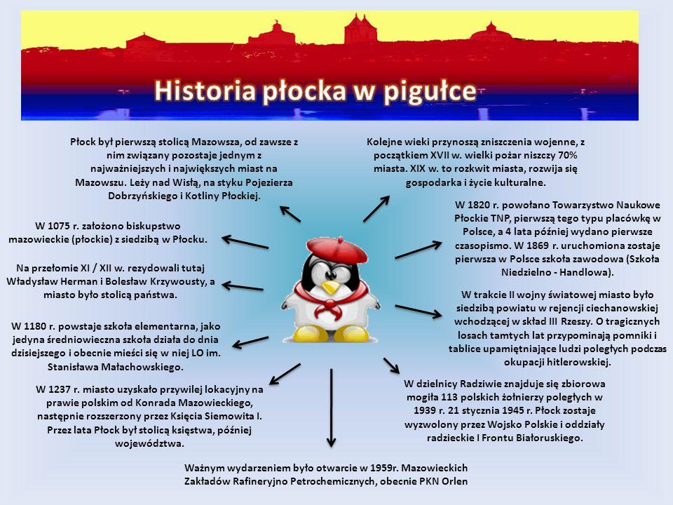 Płock był pierwszą stolicą Mazowsza, od zawsze z nim związany pozostaje jednym z najważniejszych i największych miast na Mazowszu. Leży nad Wisłą, na