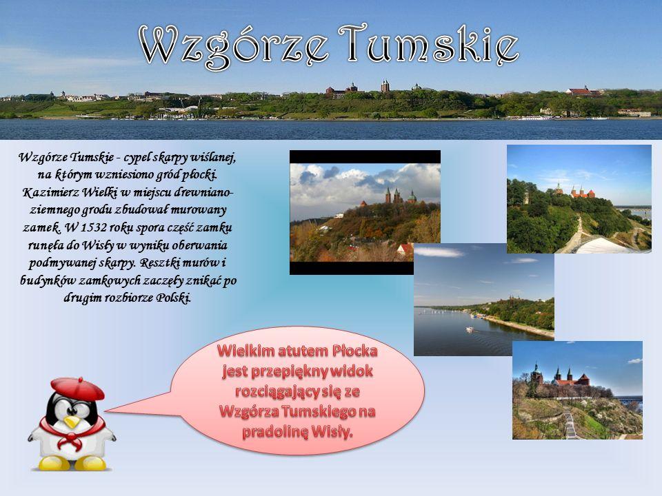 Wzgórze Tumskie - cypel skarpy wiślanej, na którym wzniesiono gród płocki. Kazimierz Wielki w miejscu drewniano- ziemnego grodu zbudował murowany zame