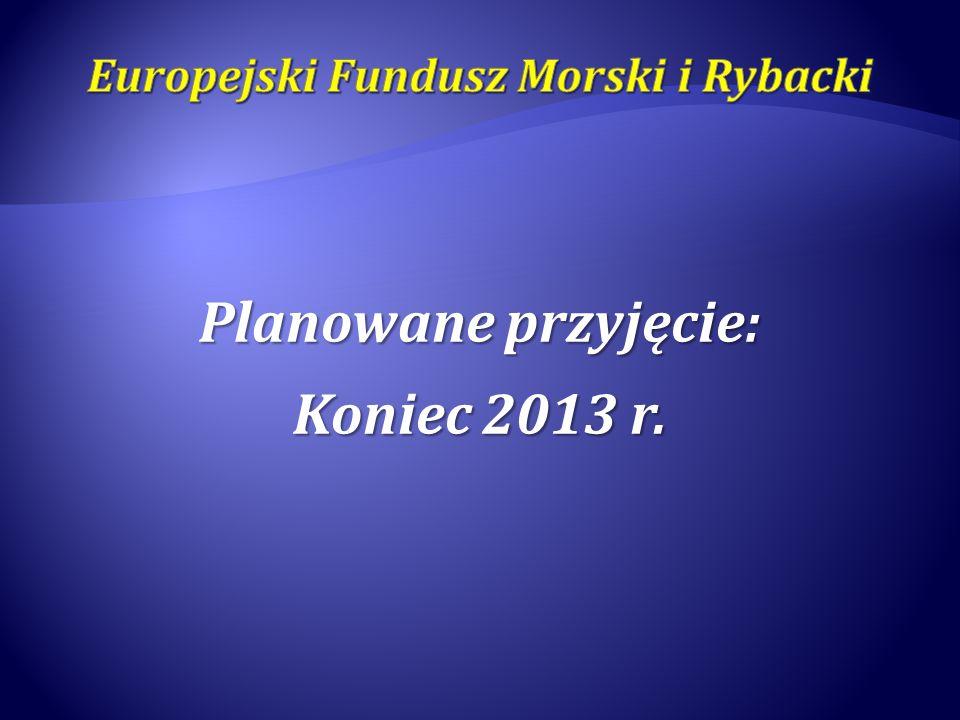 Planowane przyjęcie: Koniec 2013 r.