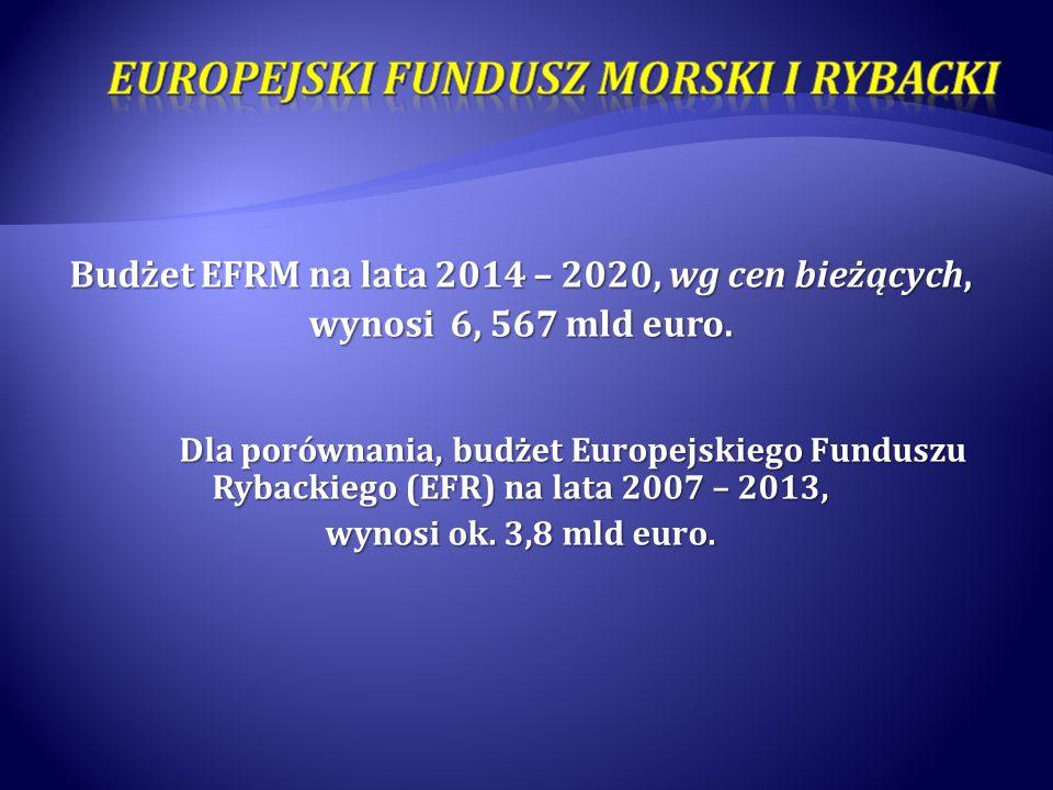 Budżet EFRM na lata 2014 – 2020, wg cen bieżących, wynosi 6, 567 mld euro. Dla porównania, budżet Europejskiego Funduszu Rybackiego (EFR) na lata 2007