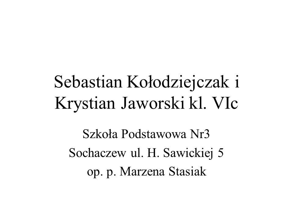 Sebastian Kołodziejczak i Krystian Jaworski kl. VIc Szkoła Podstawowa Nr3 Sochaczew ul. H. Sawickiej 5 op. p. Marzena Stasiak