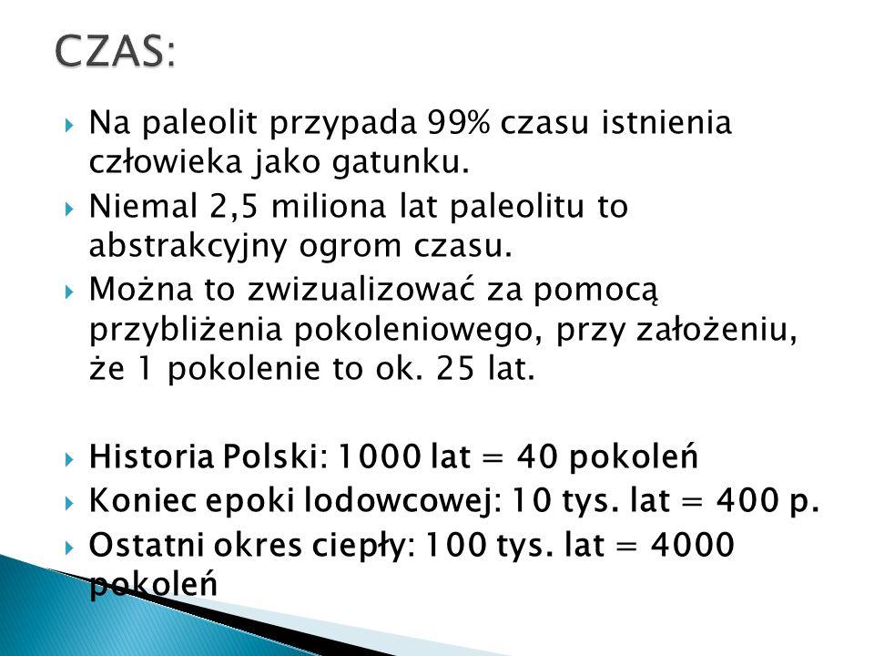 W paleolicie, szczególnie Europy, decydującą rolę pełniły jednak skały krzemionkowe.