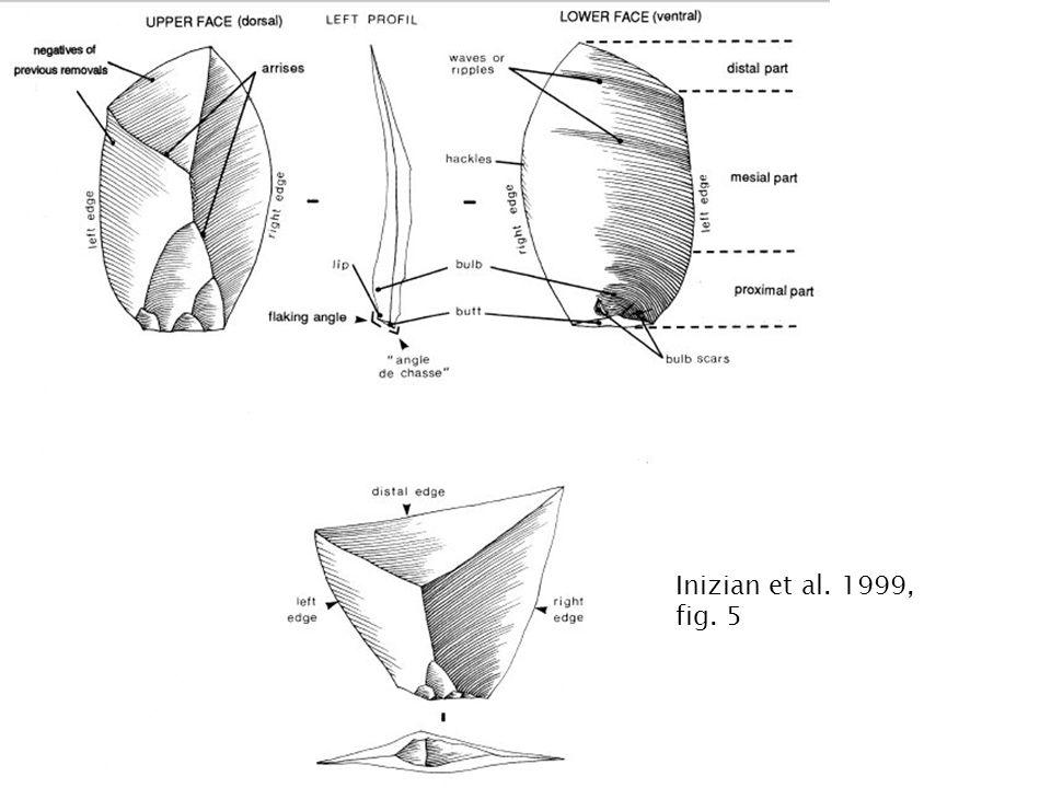 Inizian et al. 1999, fig. 5