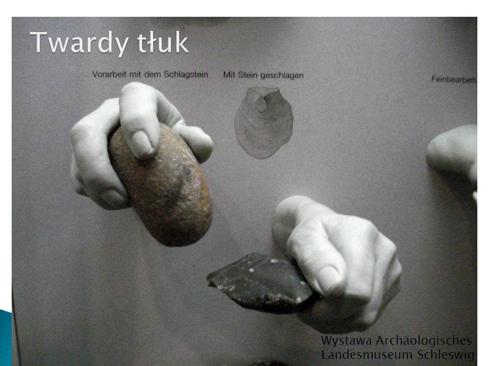 Wystawa Archäologisches Landesmuseum Schleswig
