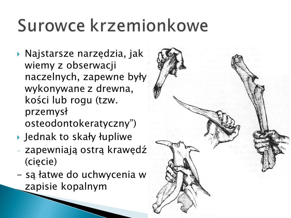 Najstarsze narzędzia, jak wiemy z obserwacji naczelnych, zapewne były wykonywane z drewna, kości lub rogu (tzw. przemysł osteodontokeratyczny) Jednak