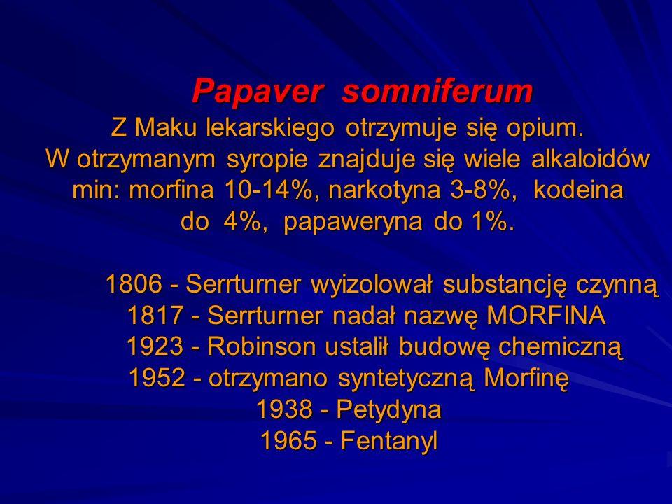 Papaver somniferum Z Maku lekarskiego otrzymuje się opium. W otrzymanym syropie znajduje się wiele alkaloidów min: morfina 10-14%, narkotyna 3-8%, kod