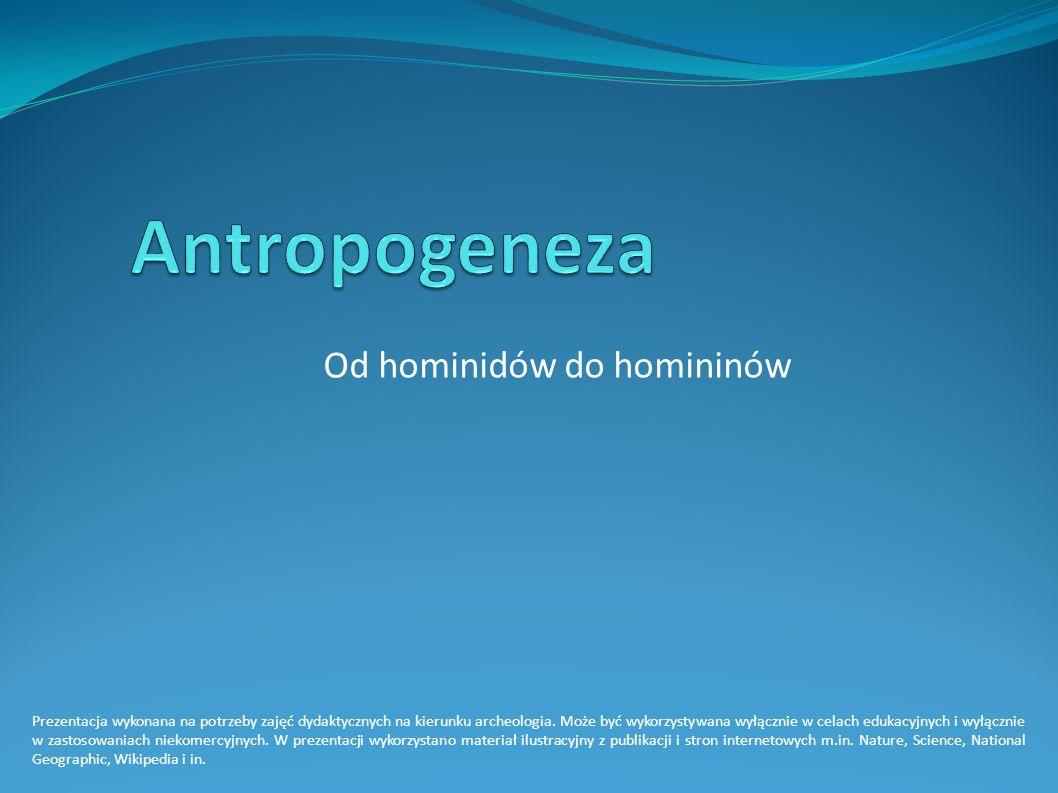 Prezentacja wykonana na potrzeby zajęć dydaktycznych na kierunku archeologia.