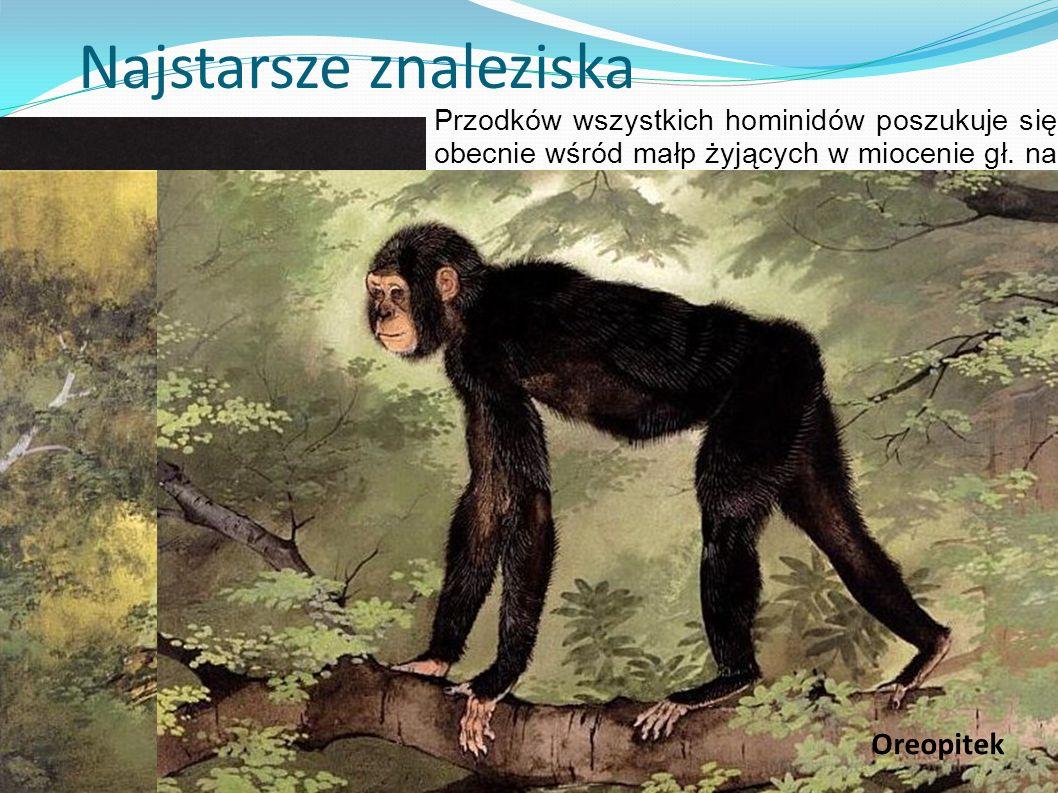 Najstarsze znaleziska Przodków wszystkich hominidów poszukuje się obecnie wśród małp żyjących w miocenie gł. na rozległych terenach Eurazji. Poniżej d