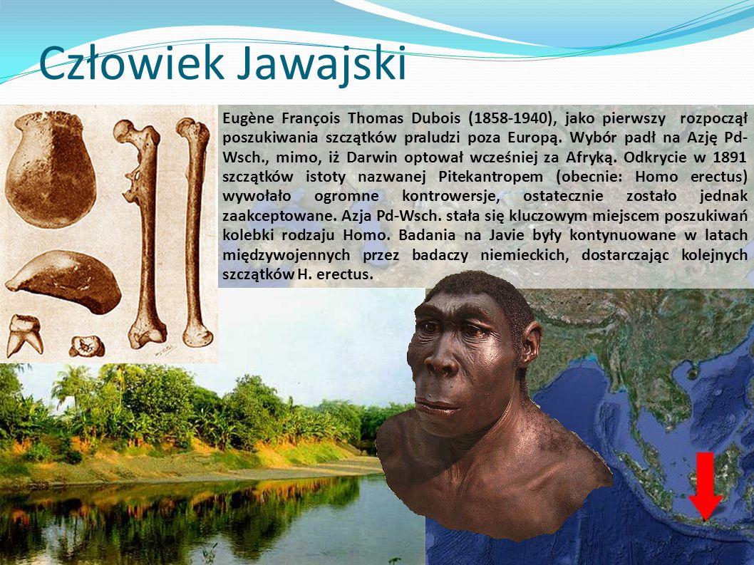 Człowiek Jawajski Eugène François Thomas Dubois (1858-1940), jako pierwszy rozpoczął poszukiwania szczątków praludzi poza Europą.