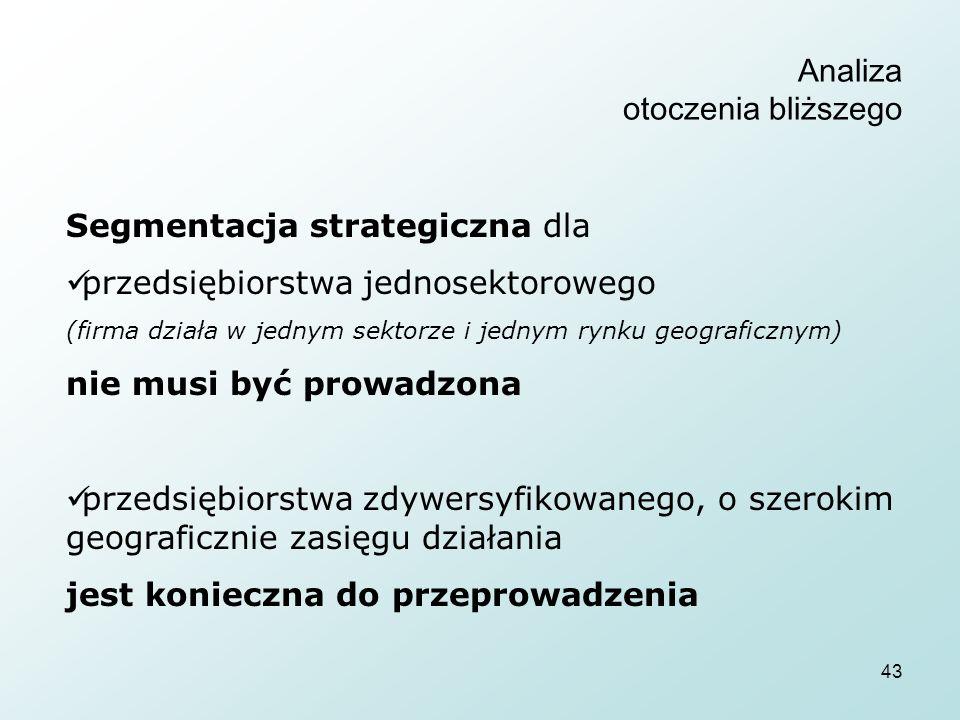 43 Analiza otoczenia bliższego Segmentacja strategiczna dla przedsiębiorstwa jednosektorowego (firma działa w jednym sektorze i jednym rynku geografic