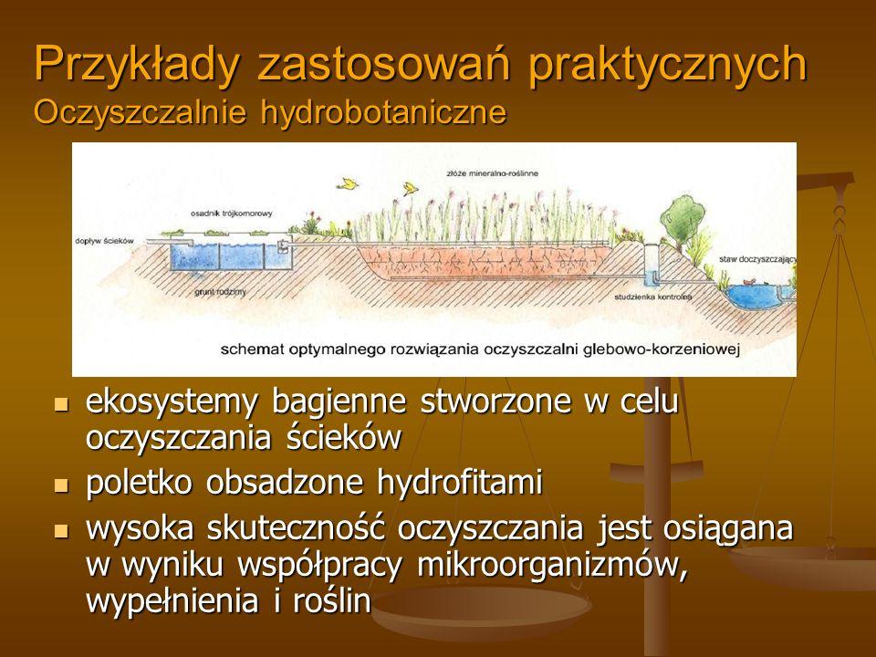 Przykłady zastosowań praktycznych Oczyszczalnie hydrobotaniczne ekosystemy bagienne stworzone w celu oczyszczania ścieków poletko obsadzone hydrofitam