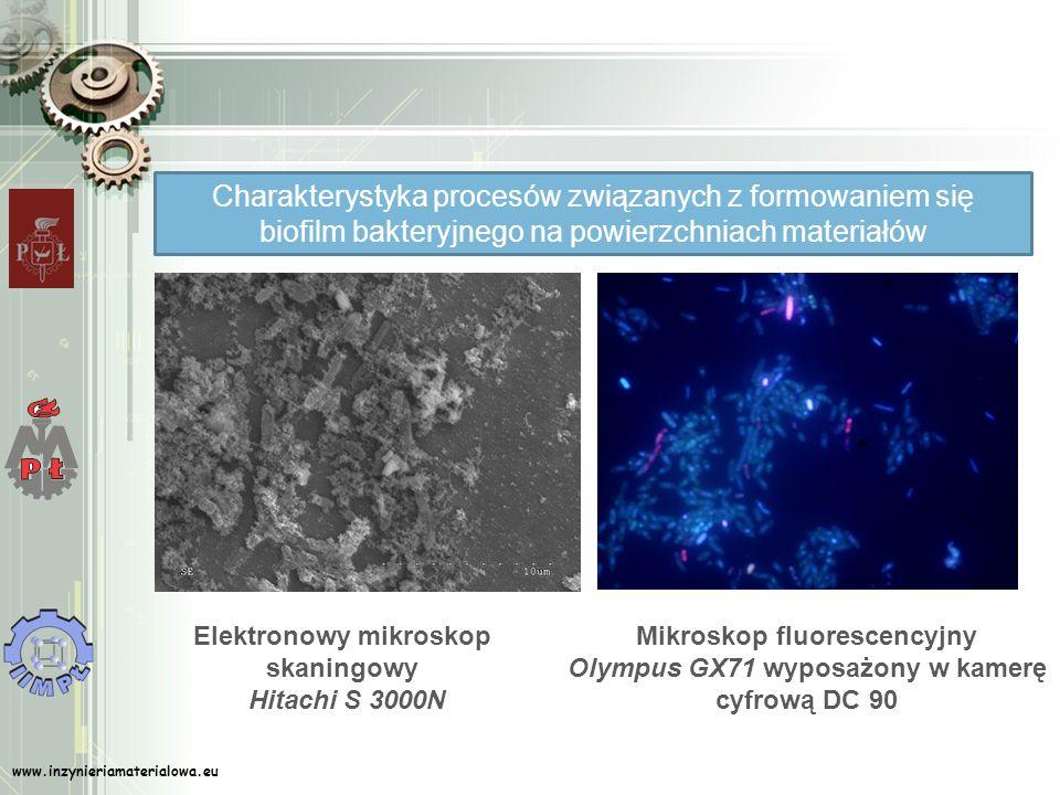 www.inzynieriamaterialowa.eu Charakterystyka procesów związanych z formowaniem się biofilm bakteryjnego na powierzchniach materiałów Elektronowy mikro
