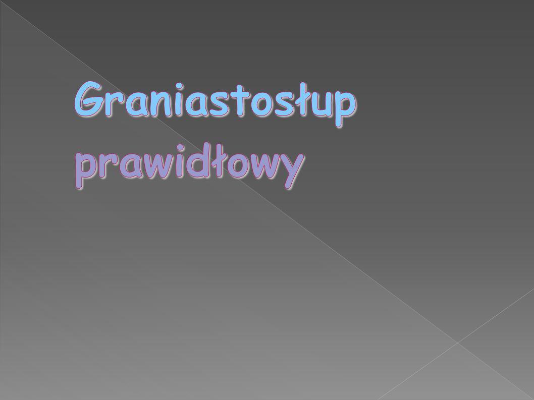 Graniastosłup prawidłowy bądź graniastosłup foremny - to w geometrii taki graniastosłup, którego obie podstawy tworzy jakikolwiek wielokąt foremny (tj.