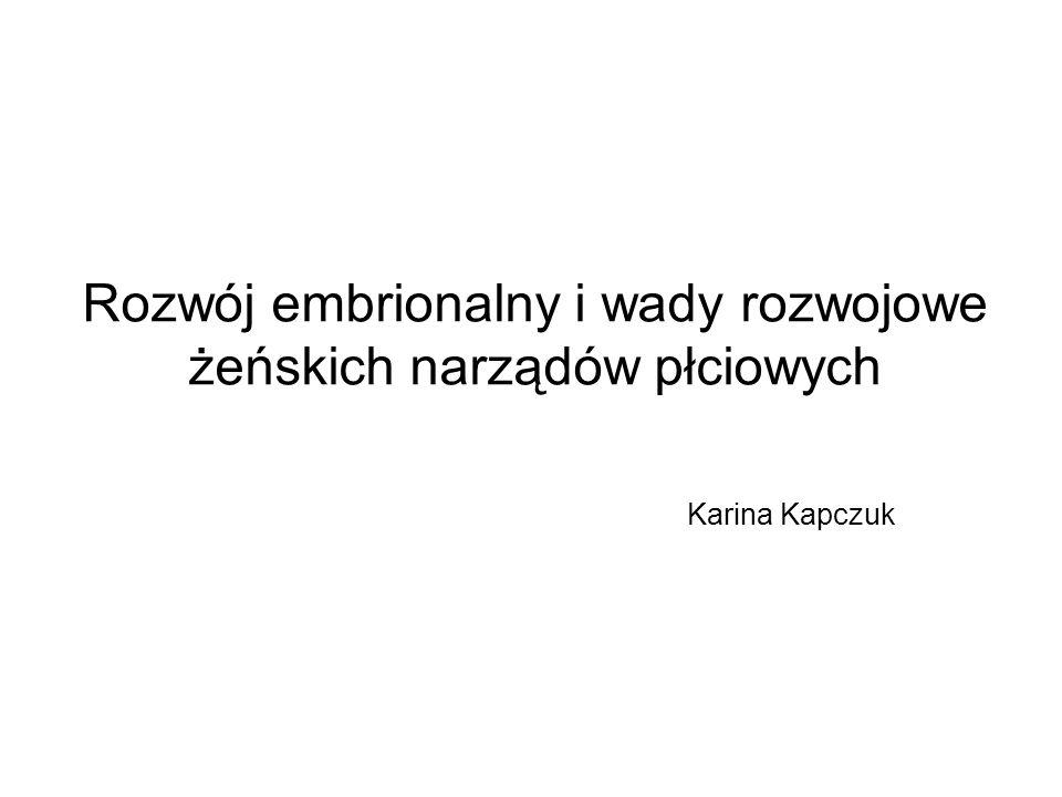 Rozwój embrionalny i wady rozwojowe żeńskich narządów płciowych Karina Kapczuk