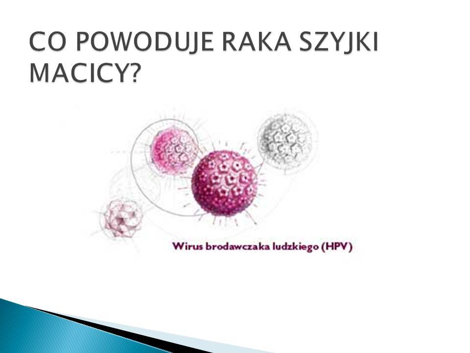 Wirus przekazywany jest w czasie stosunku seksualnego, a czasami nawet w wyniku intymnego kontaktu skóry narządów płciowych partnerów.