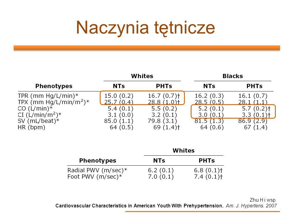 Naczynia tętnicze Zhu H i wsp. Cardiovascular Characteristics in American Youth With Prehypertension. Am. J. Hypertens. 2007