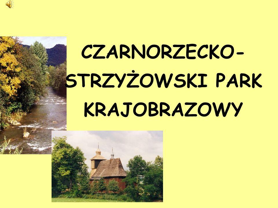 KRETÓWKI – REZERWAT W OTULINIE PARKU – utworzony w 1959 r.