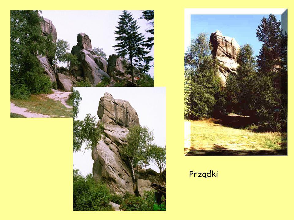 PRZĄDKI - REZERWAT NA TERENIE PARKU - utworzony w 1957r. Chroni duże zgrupowanie skałek piaskowcowych w pobliżu wsi Czarnorzeki, wyróżniających się ch