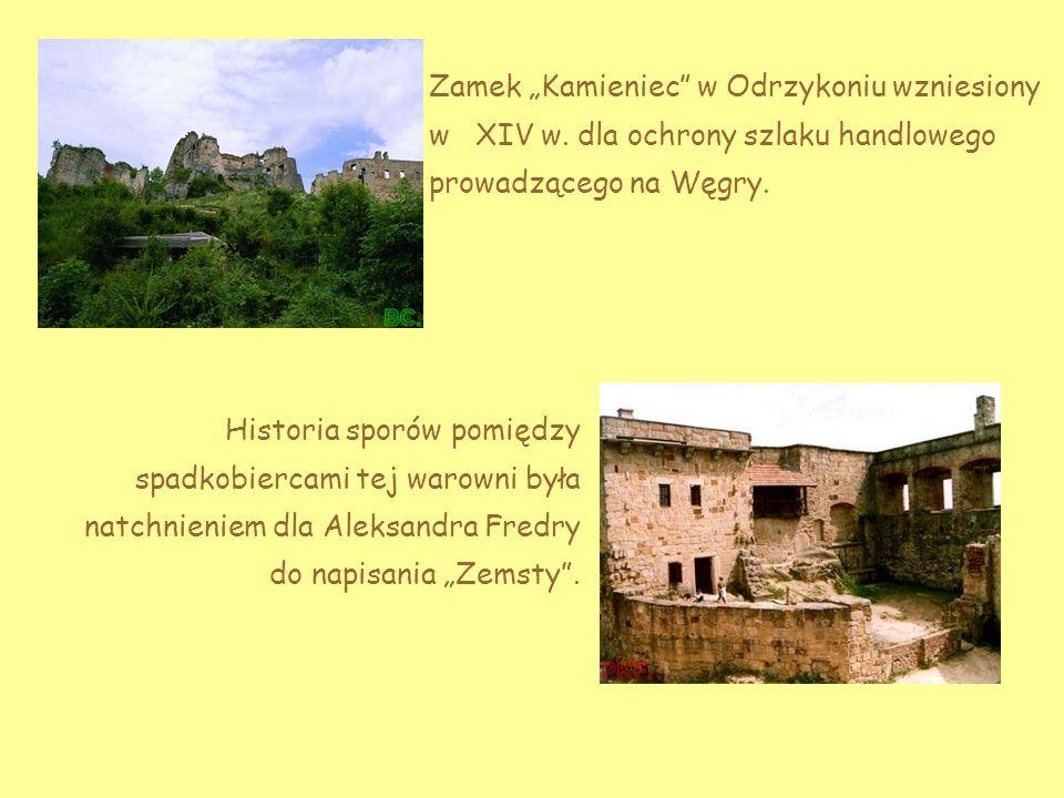 Zamek Kamieniec w Odrzykoniu wzniesiony w XIV w.
