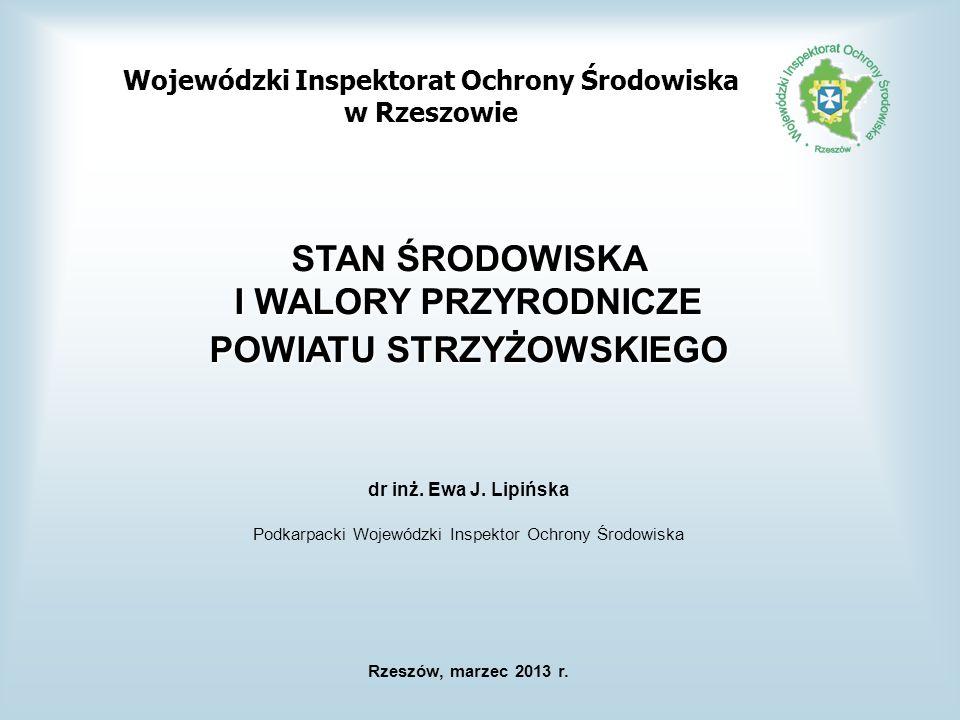 MONITORING POWIETRZA ATMOSFERYCZNEGO NA TERENIE WOJEWÓDZTWA PODKARPACKIEGO Lokalizacja stacji monitoringu powietrza w województwie podkarpackim w 2011 r.