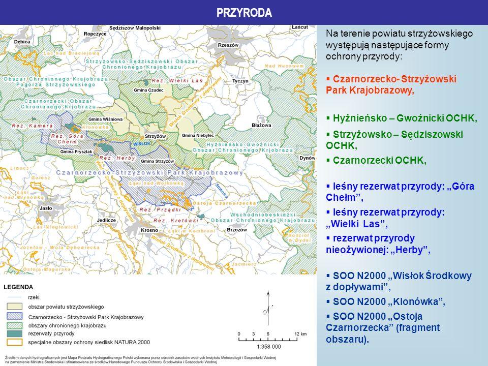 PRZYRODA Na terenie powiatu strzyżowskiego występują następujące formy ochrony przyrody: Czarnorzecko- Strzyżowski Park Krajobrazowy, Hyżnieńsko – Gwo
