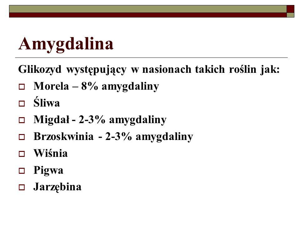 Amygdalina Glikozyd występujący w nasionach takich roślin jak: Morela – 8% amygdaliny Śliwa Migdał - 2-3% amygdaliny Brzoskwinia - 2-3% amygdaliny Wiś